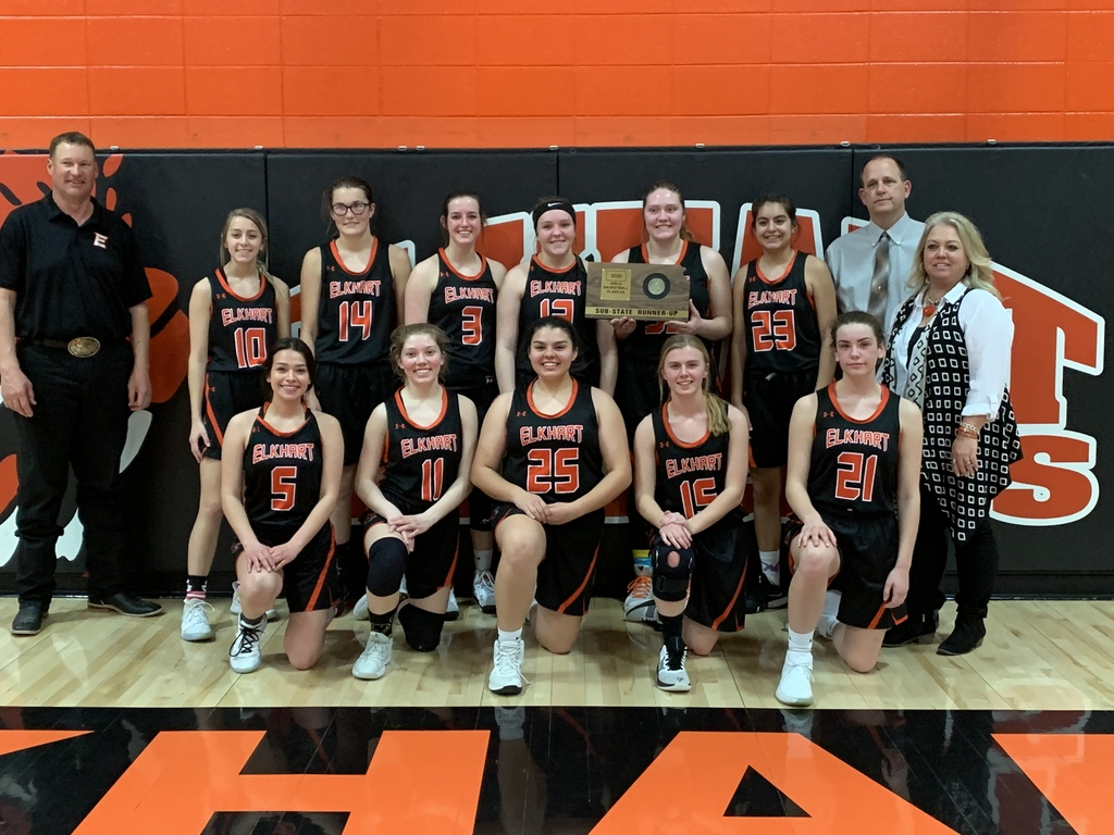 Lady Cats Substate Runner-up
